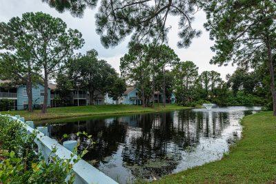 Madison Oaks Lake